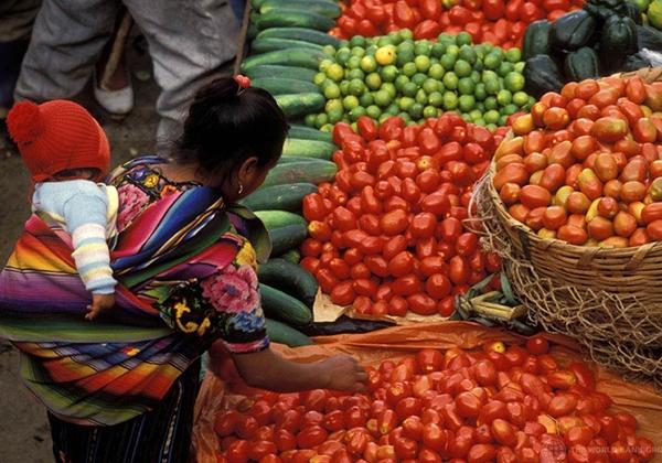 Promotion des Produits agricoles locaux