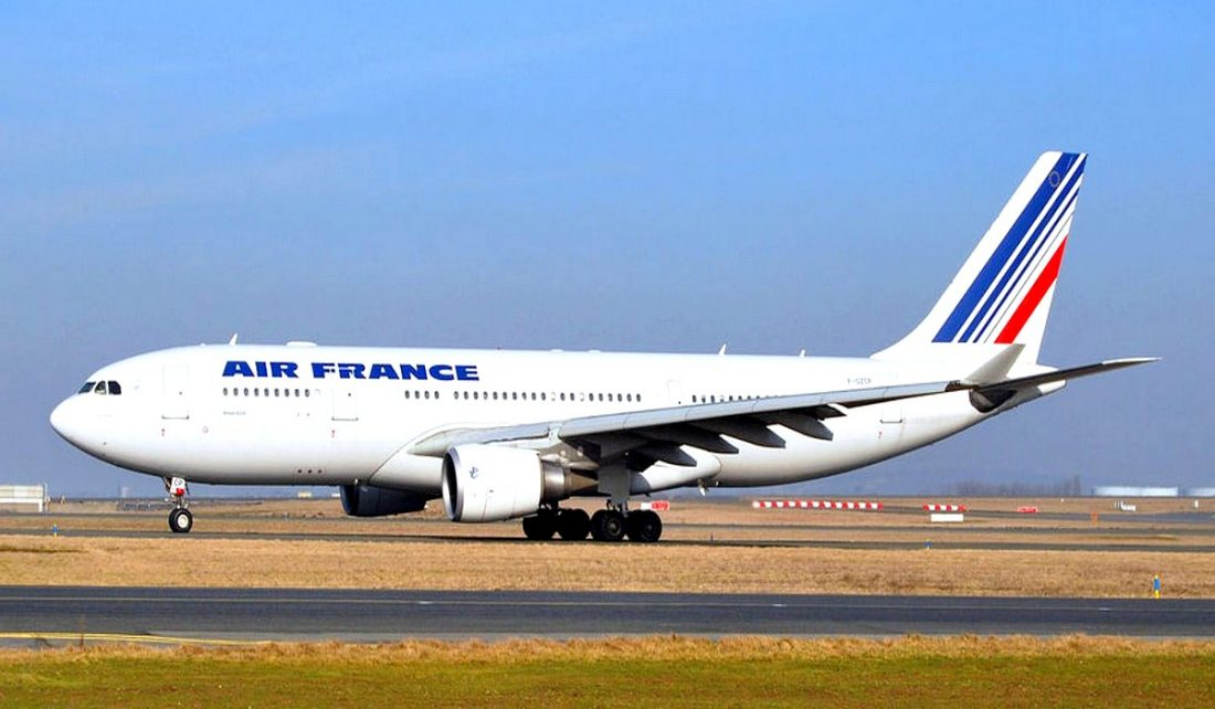 Insolite une souris emp che un avion d air france de for Interieur d un avion air france