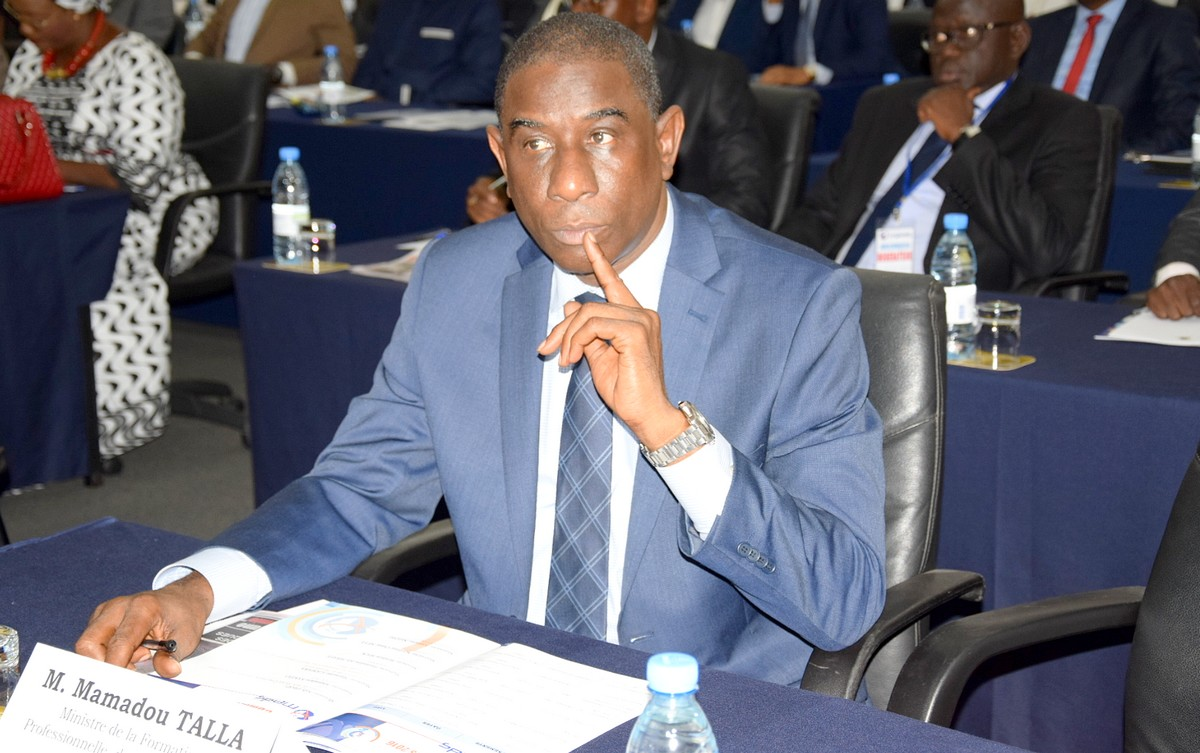 Mamadou Tall, Ministre formation professionnelle
