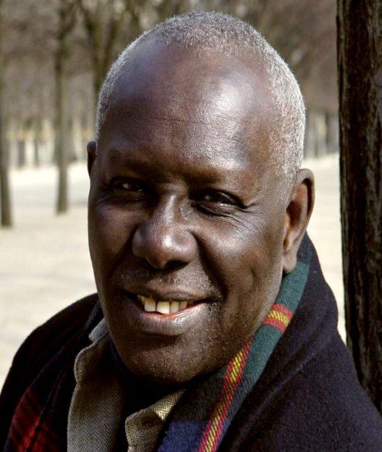 Boubacar Boris Diop plaide l'enseignement des sciences en langues nationales