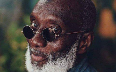 Abdoulaye Diallo - Peintre