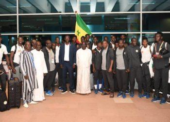 Lionceaux à Dakar