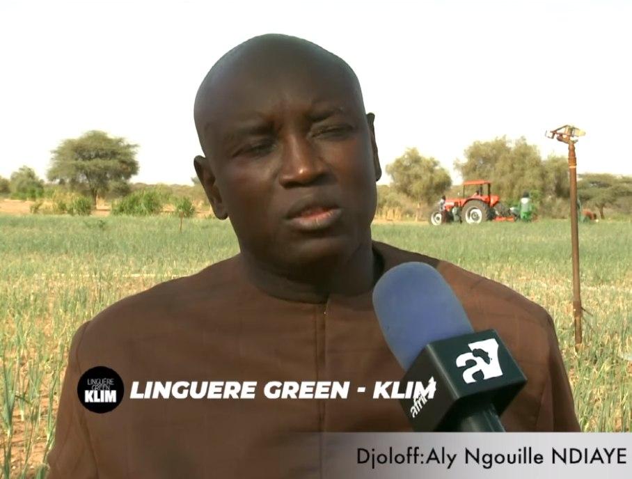 Aly Ngouille Ndiaye aux Champs