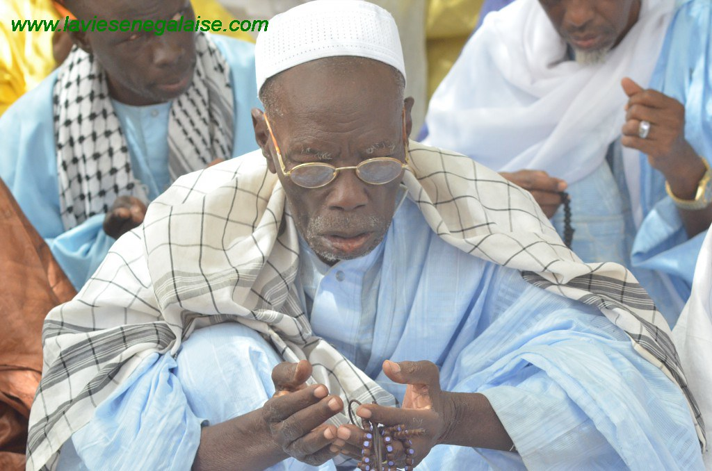 Thierno Mamadou Lamine Ly